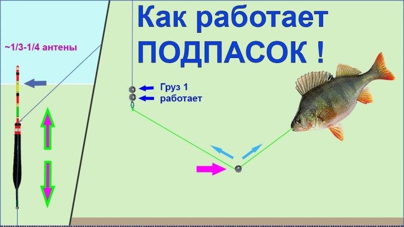 Выбор удочки для рыбалки; руководство для начинающих